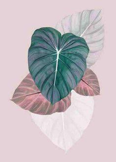 Leaf Printable Tropical Wall Art Tropical Decor by PrintsProject