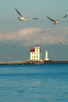 Lorain Lighthouse, Lake Erie, Ohio- by p. Great Lakes, Places To See, Scenery, Around The Worlds, Vacation, Landscape, Lighthouses, Cleveland, Lakes