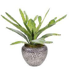 Faux Green Succulent