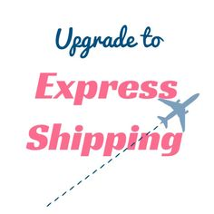EXPRESS SHIPPING // Upgrade with Tracking Number // by Twininas Tracking Number, Etsy