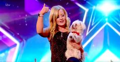 """When This Tiny Dog Walked On Stage, I Wasn't Prepared To Become This Big Of A Fan!   TheAnimalRescueSite.com   """"This tiny dog, named Trip Hazard, is about to steal your heart in a major way! Watch as he and his human perform a very impressive act on Britain's Got Talent. Isn't he the cutest? This is the perfect thing to watch if you're having a drab day. Major smiles guaranteed!!!"""" Click to watch and share video (5:17)."""