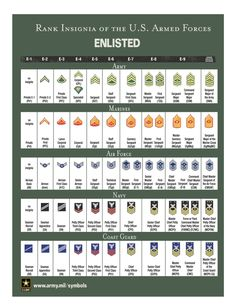 United States Military Rank Structure for the Air Force, Army, Marines, Navy, National Guard and Coast Guard Insignia - Military Rank Army Ranks, Military Ranks, Military Insignia, Military Love, Military Personnel, Military Service, Military History, Navy Enlisted Ranks, Military Slang