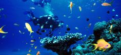 The Ultimate Guide to Snorkeling in Greece