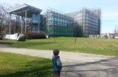 Palmiarnia miejska w Gliwicach – trochę egoztyki