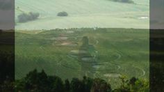 DNA ascension Crop Circle July 2010