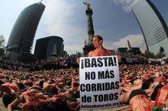 México.    Más de 1,000 activistas procedentes de todas las entidades de la República Mexicana, realizaron el más impactante acto en protesta contra la tauromaquia, con el objetivo de acelerar la prohibición de las corridas de toros en el país.