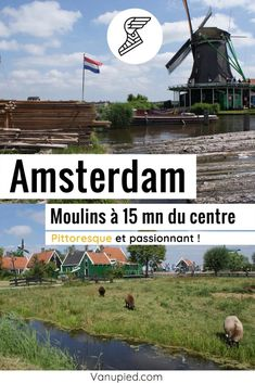 Moulins près d'Amsterdam : Passionnant ! Pour comprendre l'âge d'or des Pays-Bas. Guide Amsterdam, Le Moulin, Wind Turbine, Or, Little Green House, Lumber Mill, Green Paintings, Black Picture