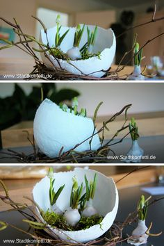 ☀Unbeauftragte Werbung☀DIY FRÜHLINGSDEKO Do you have such a longing for spring, for sun and for fresh flowers? Do you already know this trick with the flower bulbs in wax? Bulb Flowers, Fresh Flowers, Diy Spring, Diy 2019, Diy Ostern, Wedding In The Woods, Easter Crafts, Fresco, Easter Eggs