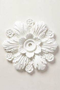 Cartouche Ceiling Medallion- $48 anthropology