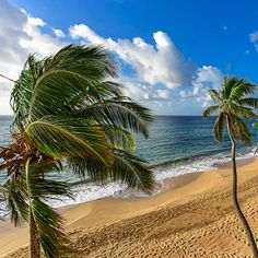 CURTAIN BLUFF Best Family Resorts, Family Friendly Resorts, Best Hotels, Caribbean, Good Things, Vacation, Beach, Water, Outdoor