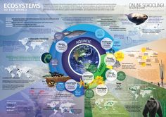 Ecosystems of the World.