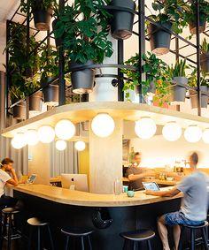lagranja design creates a leafy, light-filled office in barcelona