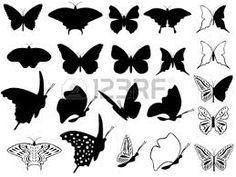 tatouage papillon noir et blanc