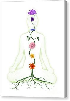 Chakras Photograph - Meditating Woman With Chakras Shown As Flowers by Oleksiy Maksymenko