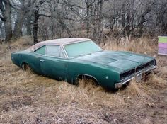 1968 Charger - Diamond in the rough - could be My Ultimate Dream Ride  TAO
