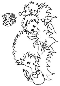 animals reading books coloring picture of hedgehog read a book