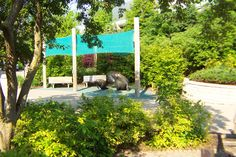 Columbus Zoo Manatee Exhibit - Merit Award from the Ohio Nursery & Landscape Association