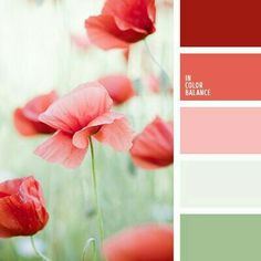 Classic color combin