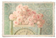 Worth their weight in beauty. #roses #flowers #vintage #scale #wedding #pink #shabby #chic #country #beaitiful