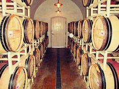 prosecco wine route