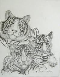 tigers - sketch