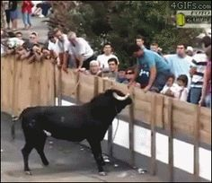A bull in the bollox....karma at its best.....21 Jerks Who Got Instant Karma