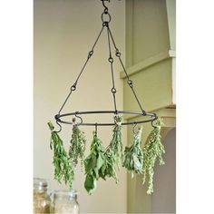 See Source Herb Drying Rack for Preserving Herbs . See Source The No Dig Vegetable Garden and at the en. Indoor Vegetable Gardening, Container Gardening, Organic Gardening, Gardening Tips, Herb Garden Indoor, Flower Gardening, Gardening Vegetables, Hydroponic Gardening, Apartment Vegetable Garden