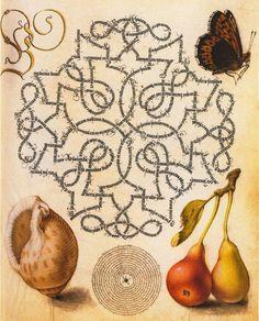 Joris Hoefnagel (Flemish, 1542-1601)
