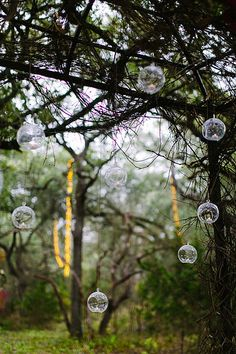 Camp Lucy: Sacred Oaks Wedding Tree Cluster Strands, Glass Orbs | Photo by Al Gawlick Photography | by IntelligentLightingDesign