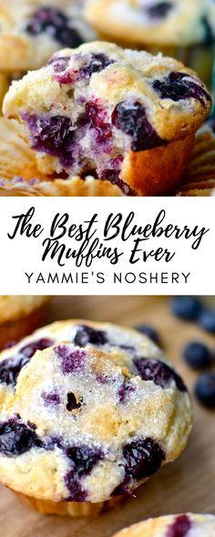 Best Blueberry Muffins, Blueberry Desserts, Blue Berry Muffins, Just Desserts, Delicious Desserts, Dessert Recipes, Yummy Food, Blueberry Recipes For Two, Blueberry Muffin Cookies Recipe