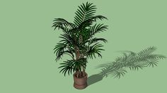 Large preview of 3D Model of Palmeira no Vaso