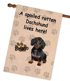 #Dachshund #GardenFlag , Dachshund House Flag, Dog Photo Garden Flag, Spoiled Rotten Dachshund dog Flag #dogs #pets #paws New Home Gifts, Gifts For Family, Christmas Garden Flag, Dog Garden, Flag Photo, Flag Stand, Spoiled Rotten, Outdoor Photos