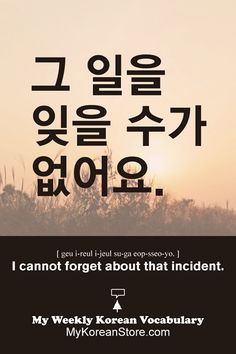 ❋ Learn Korean - I cannot forget about that incident (mykoreanstore.com)