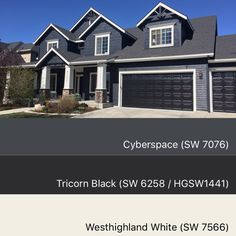 Sherwin Williams paint colors cyberspace 7076, tricorn black 6258, westhighland white 7566