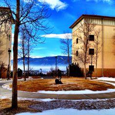 University of Colorado at Colorado Springs  My School!!!!! :)