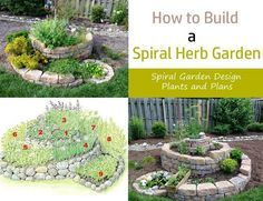 Learn how to build a herb spiral in this article. A spiral herb garden is used for growing different herbs in a small space. With it, you can make a perfect use of your vertical space in an arranged manner.
