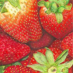 """COLORED PENCIL Magazine - Contests & Giveaways!: June CPM Art Challenge Photo #1506 """"Strawberry Picnic"""""""