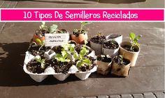 10 formas de semilleros reciclados