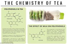 The benefits of a cuppa: A strong cup of tea contains some 180mg to 240mg of polyphenol compounds, which are shown to have beneficial effect...