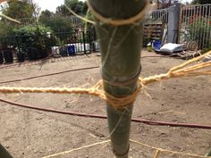 Tying in more bamboo for the structure.  We are using one pole for every 2 feet of circumference.