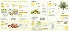 Las empresas Colanta, Incauca y Diana son las líderes de la agroindustria