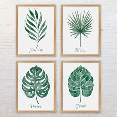 Botanical Leaf Print Collection by Alexandra Snowdon, the perfect gift for Explore more unique gifts in our curated marketplace. Botanical Wall Art, Botanical Prints, Art Aquarelle, Watercolor Art, Leaf Prints, Wall Prints, Impressions Botaniques, Garden Gifts, Tropical Leaves