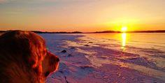Auringonlaskun ihailua. :)