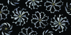 Textiles © janaïna milheiro