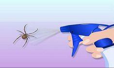 Έτσι θα απαλλαγείτε από κάθε είδους έντομα στο σπίτι χωρίς χημικές ουσίες – Lifenews