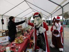 Nero und Rotanes im Tierheim Recklinghausen am Weihnachtsfest