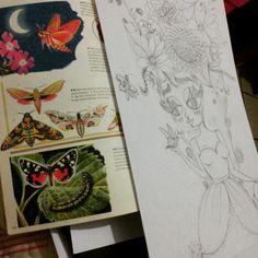 Desenho flores e insetos