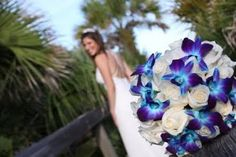 white roses and blue orchid wedding bouquet. Let's make this white and blue orchids. Blue Orchid Bouquet, Blue Orchid Flower, Blue Orchid Wedding, Flowers Roses Bouquet, Orchid Bouquet Wedding, Bridal Bouquet Blue, Rose Bouquet, Boquet, Peacock Wedding