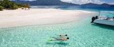 #Snorkel the #BVI and #USVI on your next #Vacation!