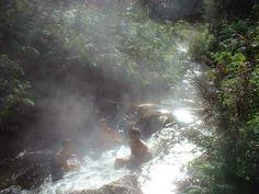 Natural hot stream, Kerosene Creek, Rotoroa